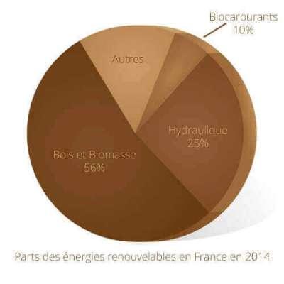 Le bois, 1ère énergie renouvelable de France !